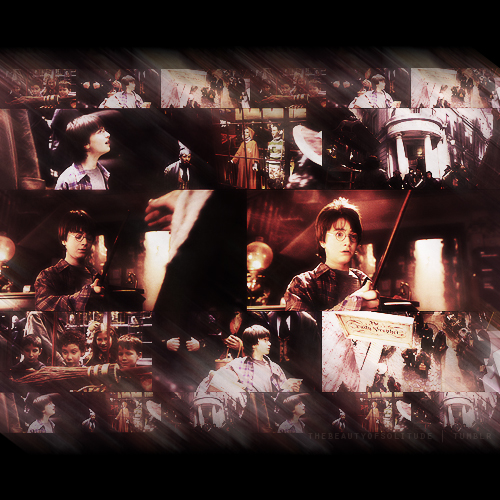 I am back with Best Moments of Harry Potter and the Philosopher's Stone tumblr lbpuyz2lYL1qa1rooo1 500